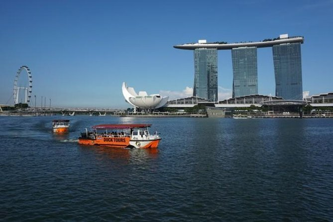 Private Tour: Singapore Highlights in Full Day for Family with Kids photo 1