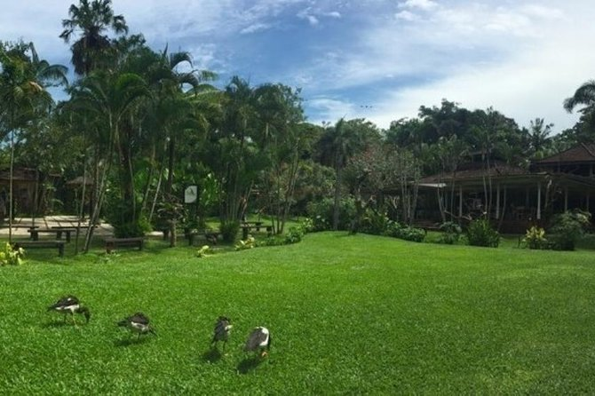 Private Tour : Bali Bird park and Tegenungan Waterfall