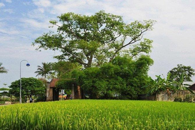Hanoi-Duong Lam Ancient Village-Bat Trang Ceramic Village Full Day Tour
