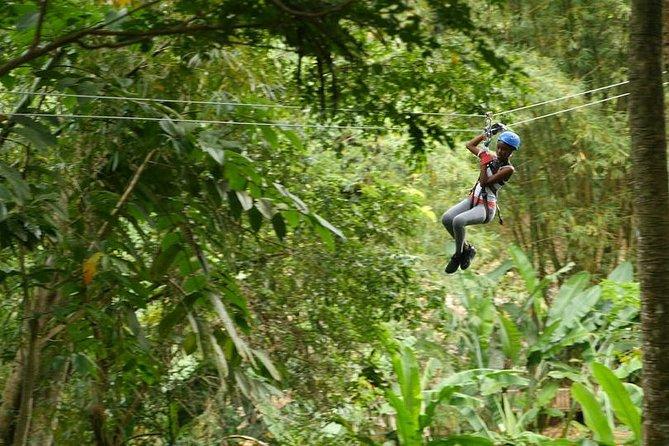 Day of Adventure - Zipline and Hike or Bike