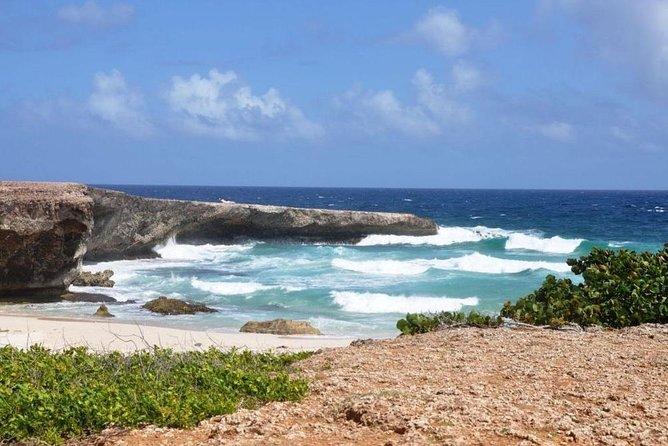 El Paseo Ranch Private Hiking: Aruba's National Park and Seashore Excursion