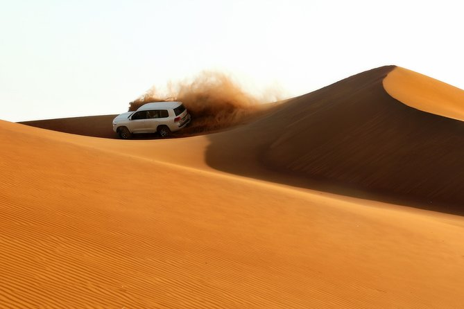 Dubai Evening Red Dunes Desert Safari and BBQ at VIP camp