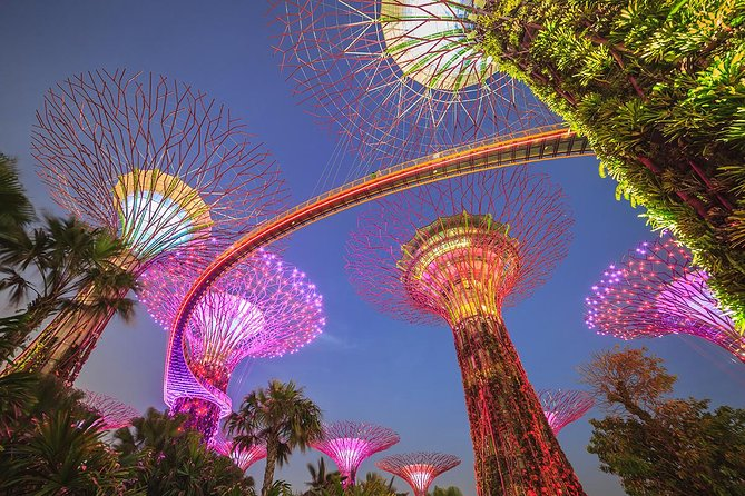 Gardens By the Bay with 2 Flower Dome & Ocbc Skyway & Light & Sound Show