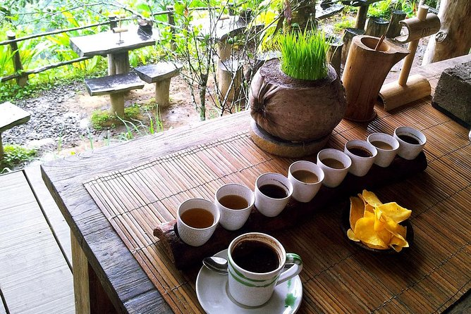 Private Tour: Ubud Highlights With Sacred Monkey Forest Sanctuary: All-Inclusive