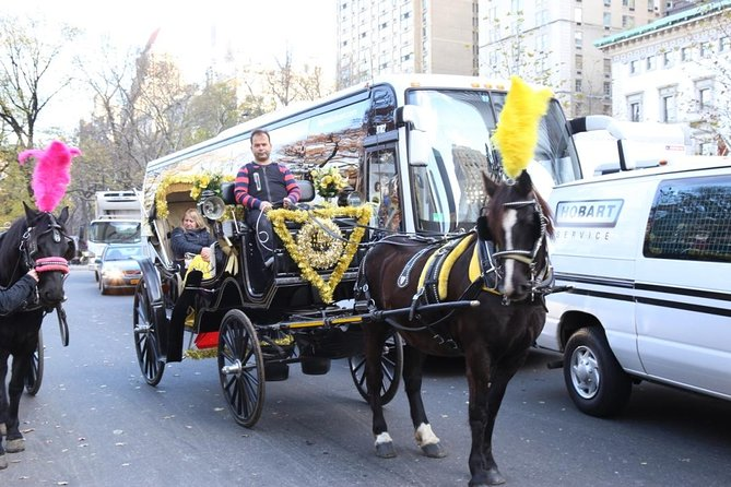 Central Park Private Horse Carriage Tour in NYC