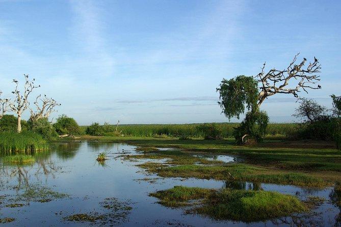 Private Tour : Bundala National Park Safari