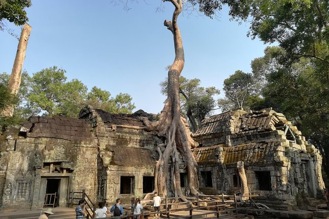 Angkor Wat Small Circuit Tour
