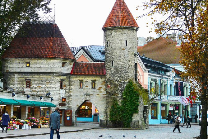 Tallinn Small Group Walking Tour: Old Town Only