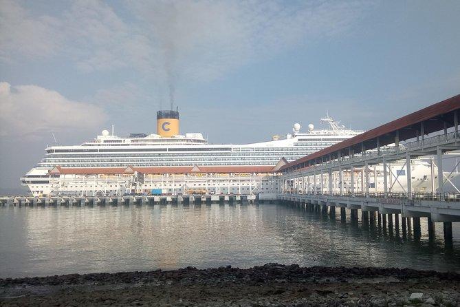 ( Base On Per 1 Vehicle Price) Port Klang Cruise Excursion To KL City Tour