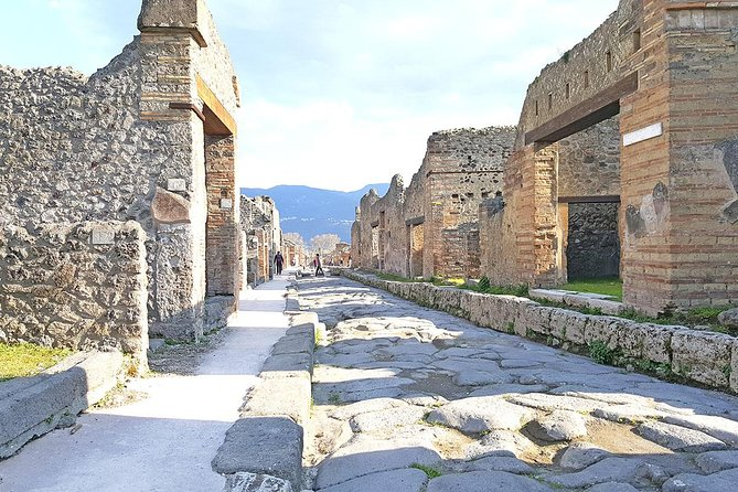 Skip-the-Line Pompeii & Volcano Vesuvius Day Tour w Hotel or Port Pickup