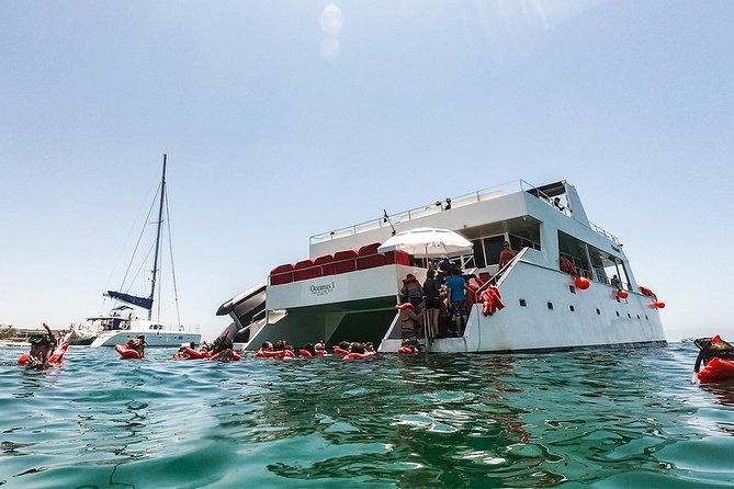 Los Cabos Reef Snorkeling Cruise