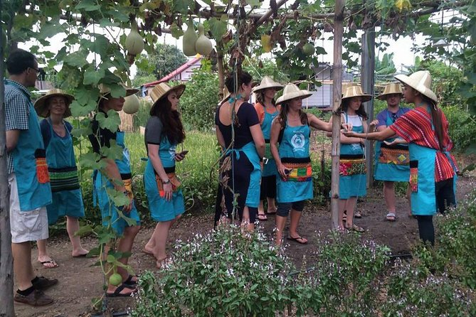 Half Day Cooking Class Including Market Tour from Chiang Mai