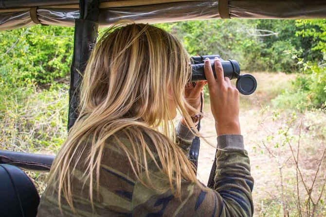 Leopard Safari Tour in Yala National Park