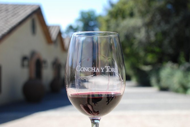Half-Day Private Tour: Concha y Toro Vineyard from Santiago with Transportation
