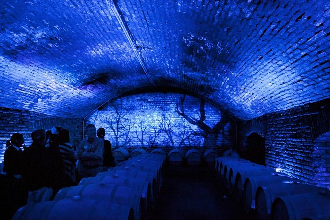Small-Group Maipo Vineyards Full-Day Experience with Optional Lunch