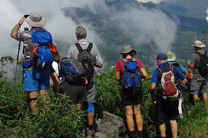 Trekking & Picnic in The Tea Plantation From Ella, Haputale & Bandarawela