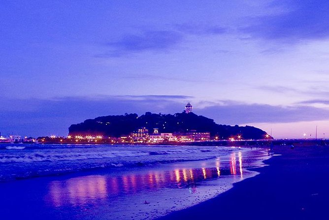 Private Tour - Introducing all the Famous Spots in Kamakura and Enoshima!