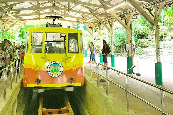 Private Tour - Visit Tokyo's Michelin rated Mountain, Mt.Takao