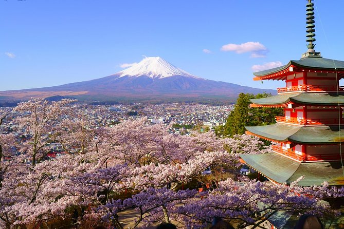 Private Tour to Mt.Fuji & Lake Kawaguchi