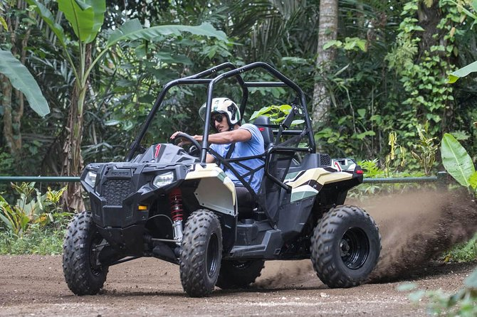 Single or Double Jungle Buggies In Taro Bali
