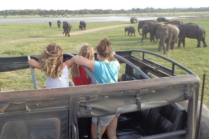 Kaudulla Park Private Jeep Safari from Sigiriya