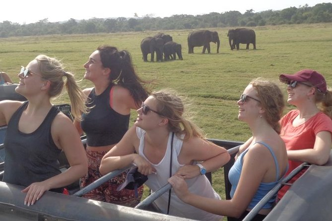Kaudulla Park Safari Private Jeep only from Habarana