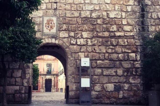 Alcazar, Cathedral And Santa Cruz Private Tour