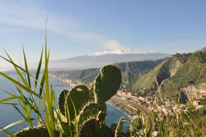 Etna & Taormina private car and guide