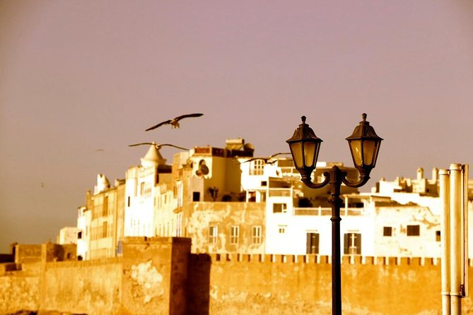 From Agadir: Private Guided Day Trip to Essaouira