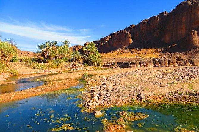 Excursion privée d'une journée complète à Ouarzazate et l'Oasis de Fint