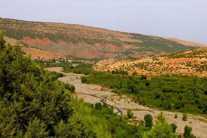Marrakech High Atlas, Toukbal National Park, and Imlil Private Day Trip photo 1
