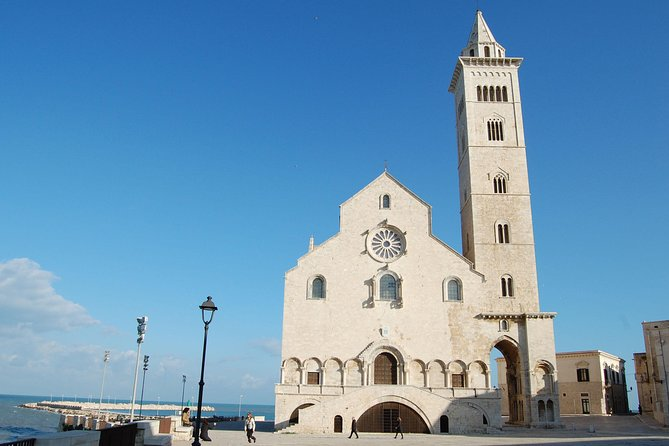 Trani Private Tour: a piece of art overlooking the Adriatic sea