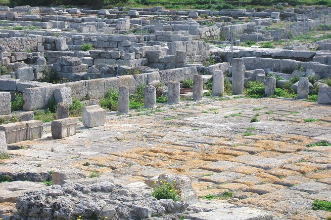 Private guide to Ruins of Gnatia (Puglia) and archaeological Museum, superbly laid out and interpreted historic site by the sea