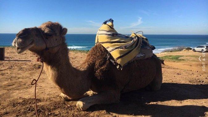 Tour of Tangier 1-2 people
