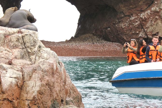 Private Ballestas Islands Tour