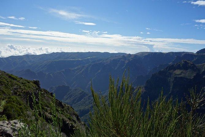 Excursão particular pelo Curral das Freiras saindo de Funchal