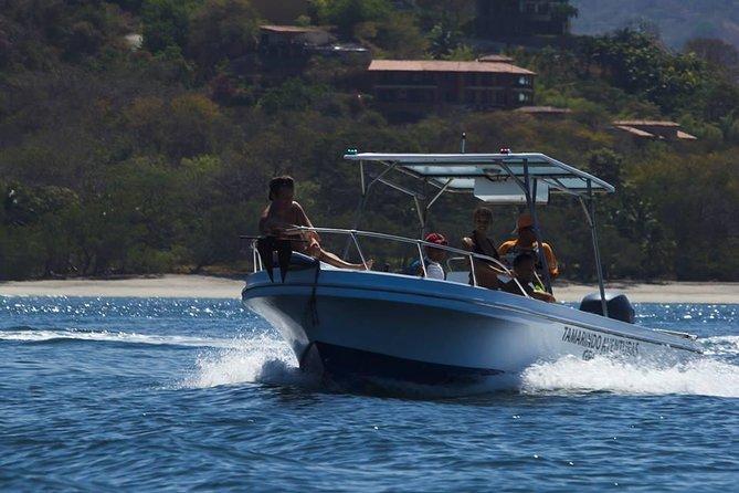 Flamingo Beach Snorkeling Boat Tour