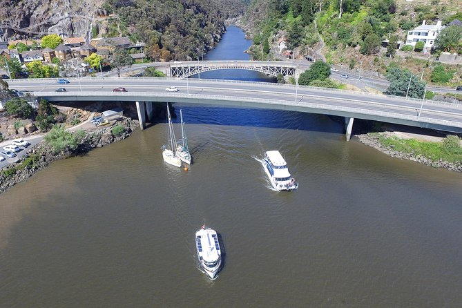 2.50 hour Afternoon Discovery Cruise including Cataract Gorge departing at 3 pm