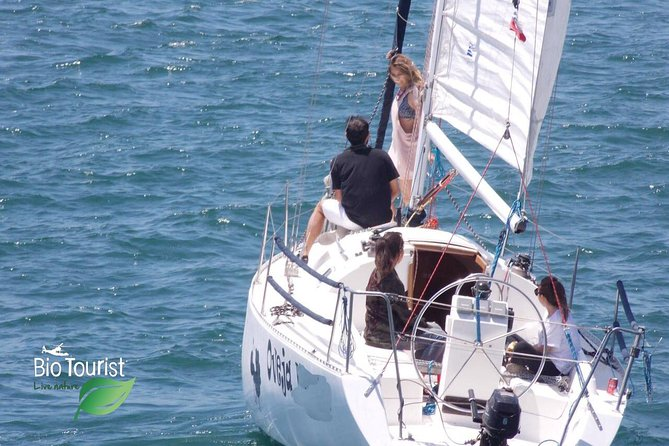 Yacht Experience