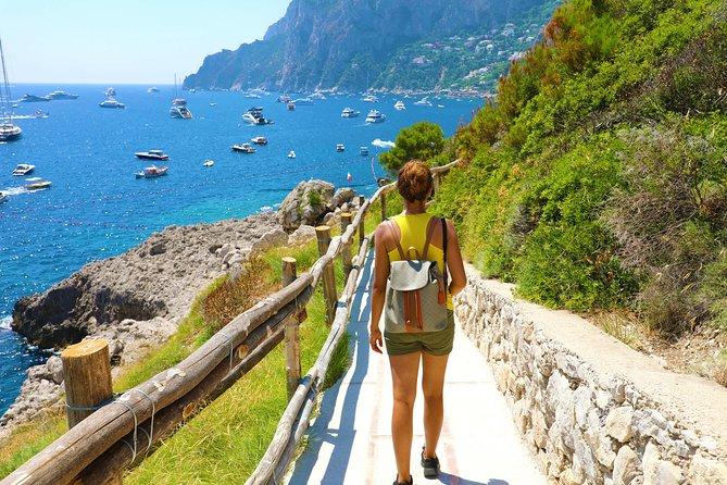 Capri all Inclusive Private Tour from Amalfi