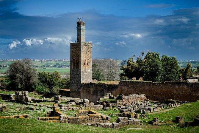 Casablanca To Rabat Day Trip VIP EXCURSION Jewish Sightseeing & Landmarks