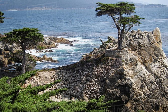 Monterey, Carmel with 17 miles Drive VIP Private SUV Tour