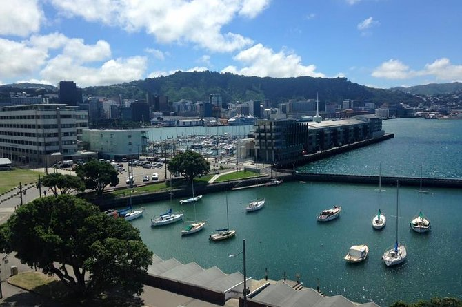 Wellington Waterfront Bike Tour photo 3