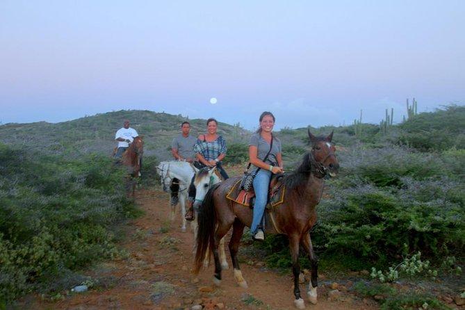 Aruba Horseback Riding Tour to Hidden Lagoon