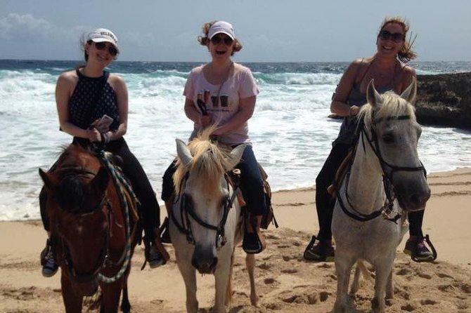 Aruba Urirama Cove Horseback Riding Tour