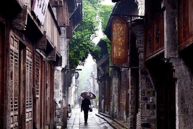 Wuzhen e Xitang Water Town Excursão Privativa de Dia Inteiro saindo de Xangai com almoço e jantar