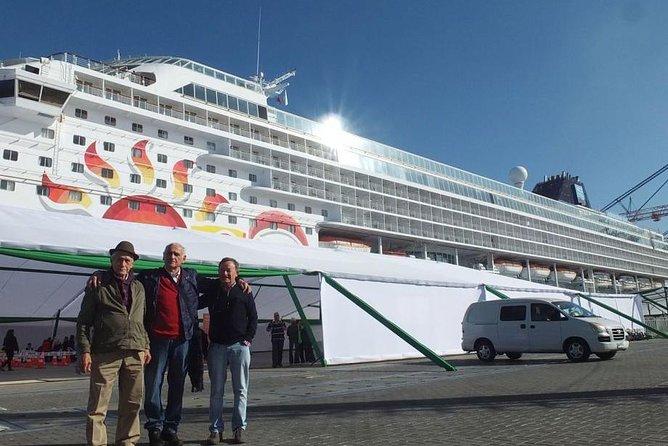 Private San Antonio Port Pre-Post Cruise Santiago City Tour and Undurraga Winery