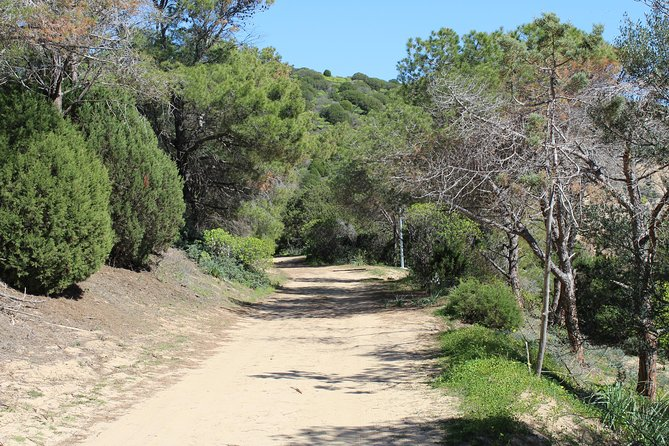 Cagliari: Hiking at the Ancient Roman Road from Chia photo 1