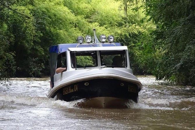 Private Half-Day Boat Tour to Tigre Delta