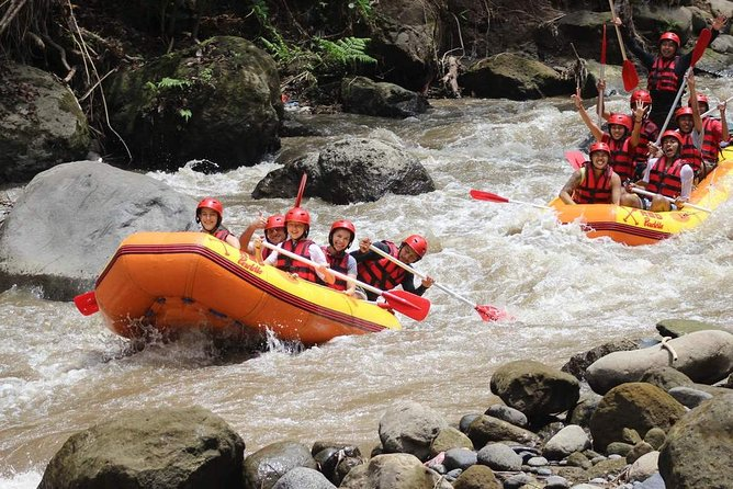 Bali Downhill Cycling and White Water Rafting photo 7